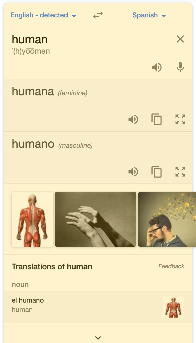 Translation Box search result on a mobile device
